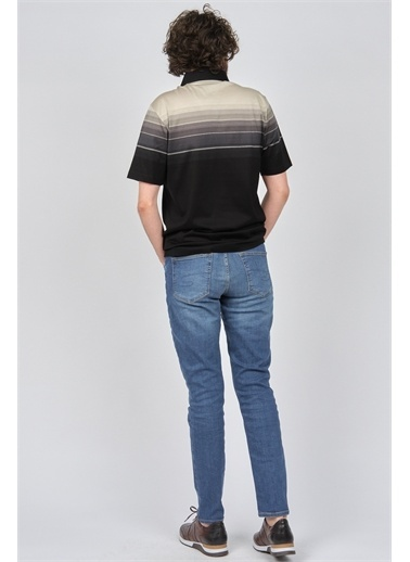 Arslanlı Arslanlı Erkek Blok Desenli Polo Yaka T-Shirt  Siyah